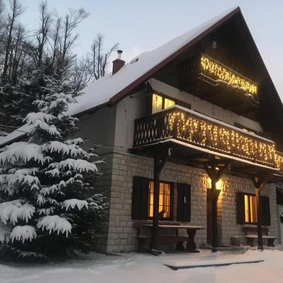 Apartments Mountain paradise (Apartments Cehic)
